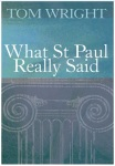 Book Wright What Saint Paul really said